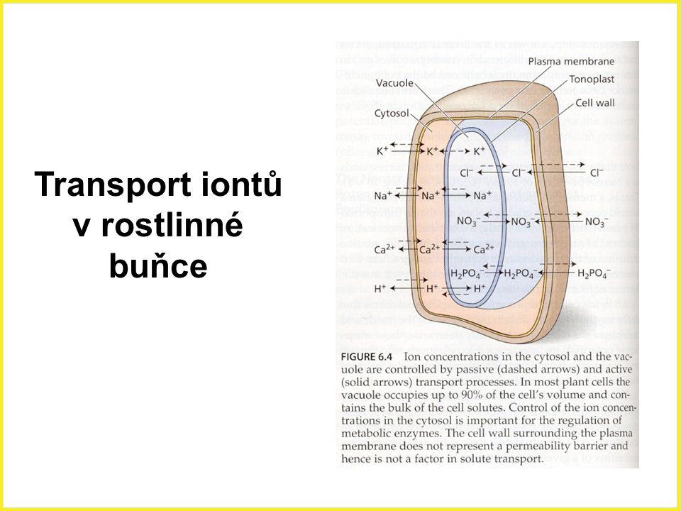 Transport iontů v rostlinné buňce