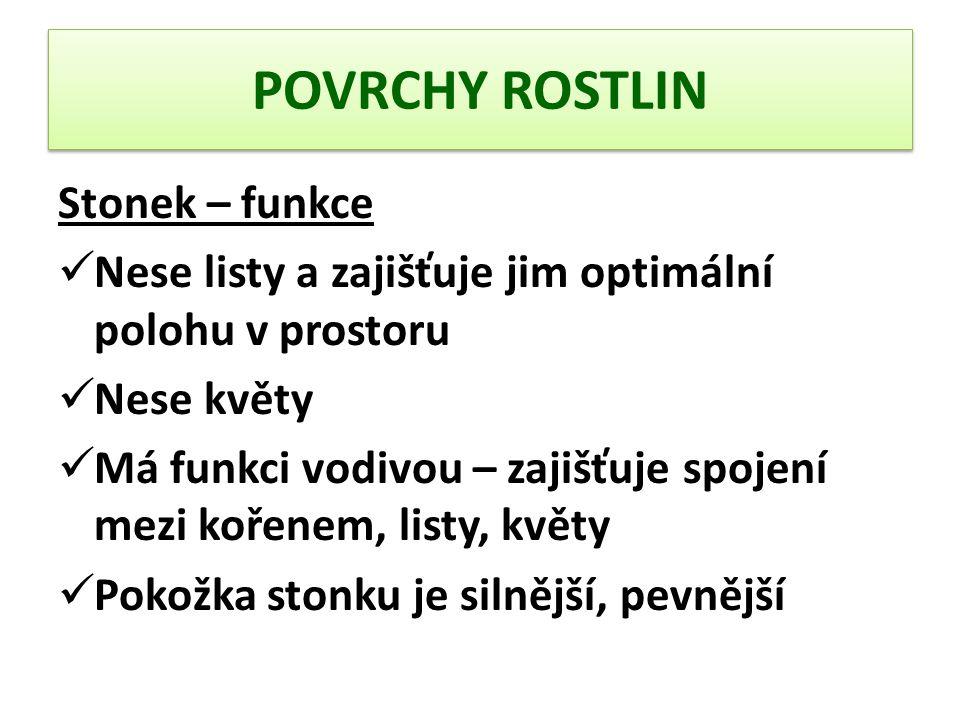 POVRCHY ROSTLIN Stonek – funkce