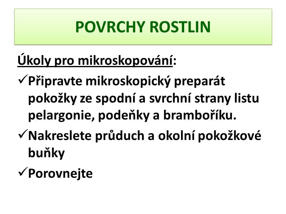 POVRCHY ROSTLIN Úkoly pro mikroskopování: