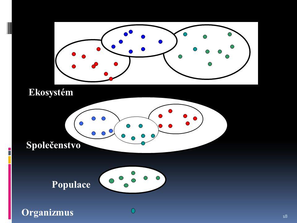 Ekosystém Společenstvo Populace Organizmus