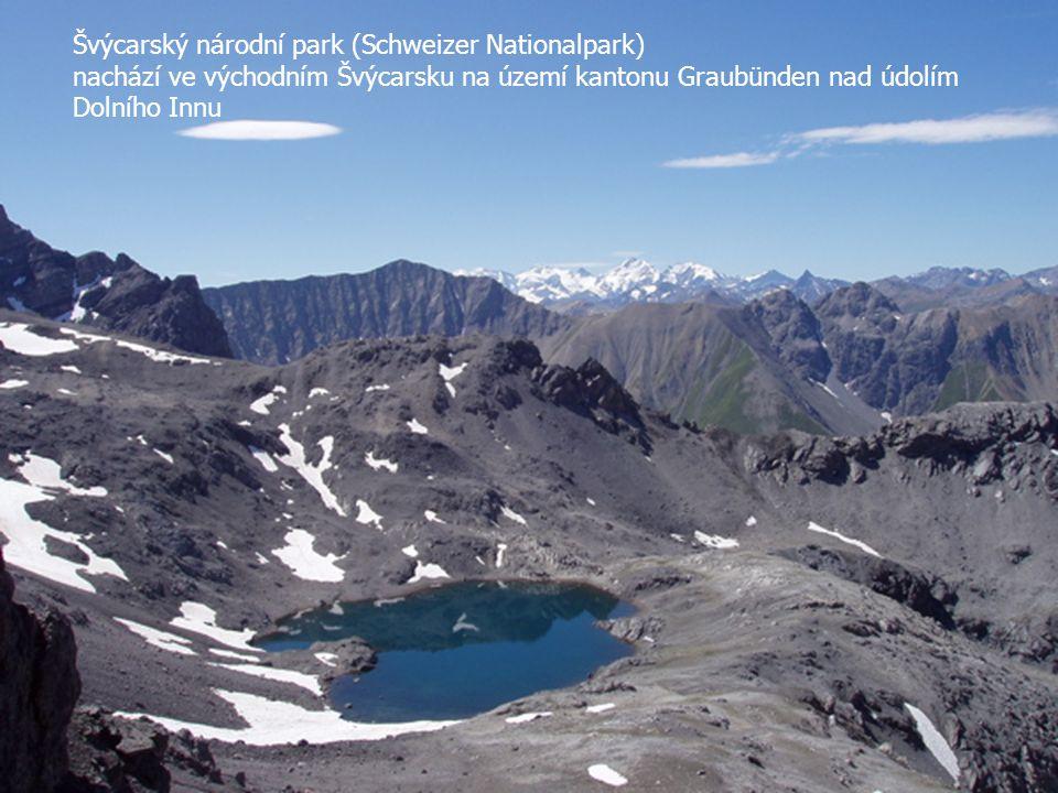 Švýcarský národní park (Schweizer Nationalpark)