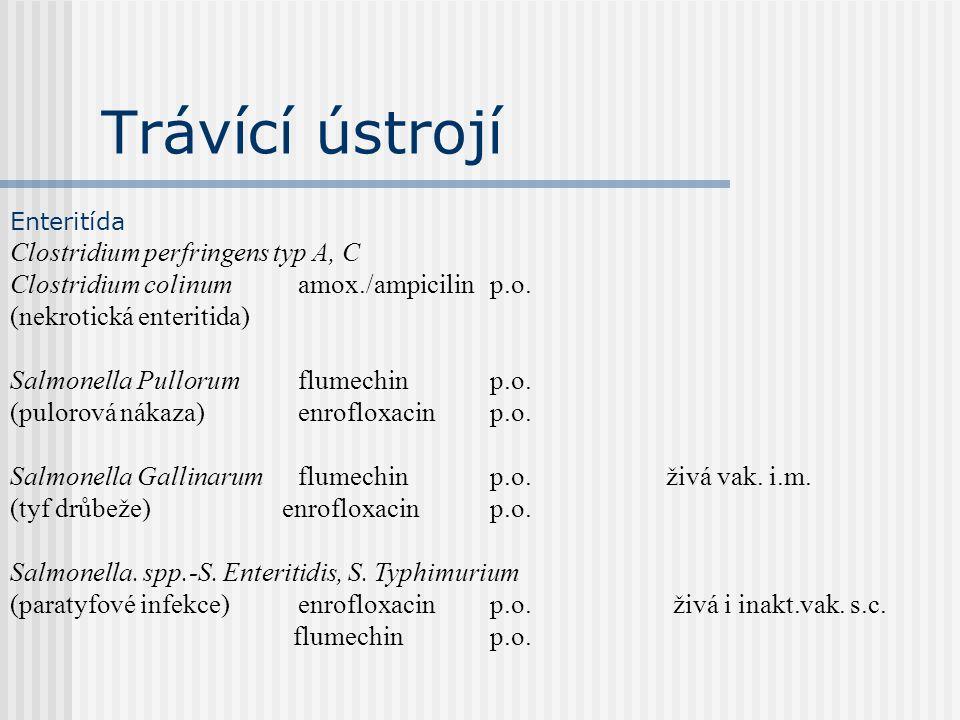 Trávící ústrojí Clostridium perfringens typ A, C