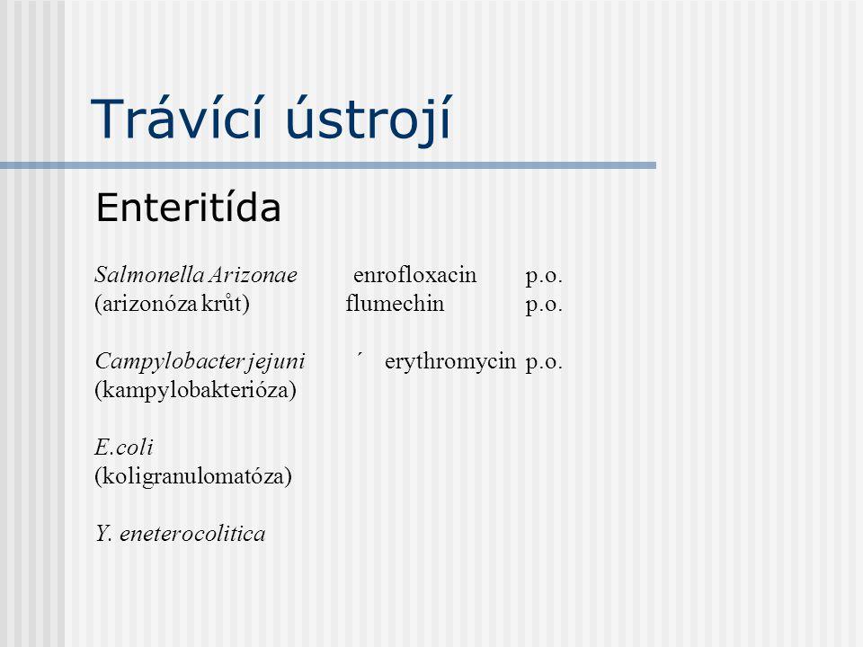Trávící ústrojí Enteritída Salmonella Arizonae enrofloxacin p.o.