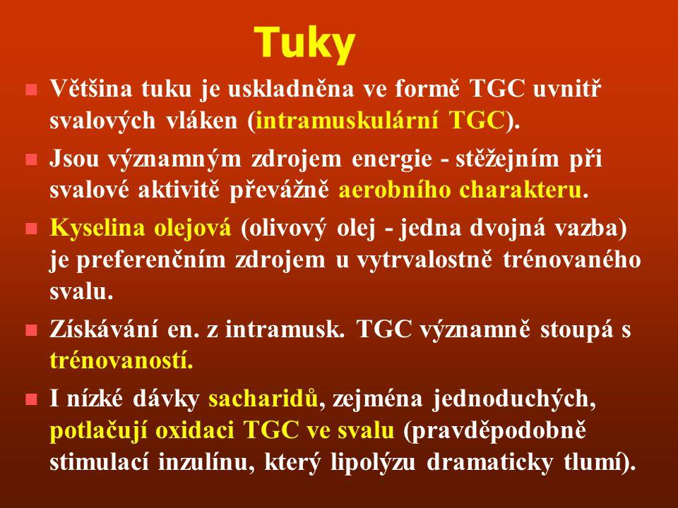 Tuky Většina tuku je uskladněna ve formě TGC uvnitř svalových vláken (intramuskulární TGC).