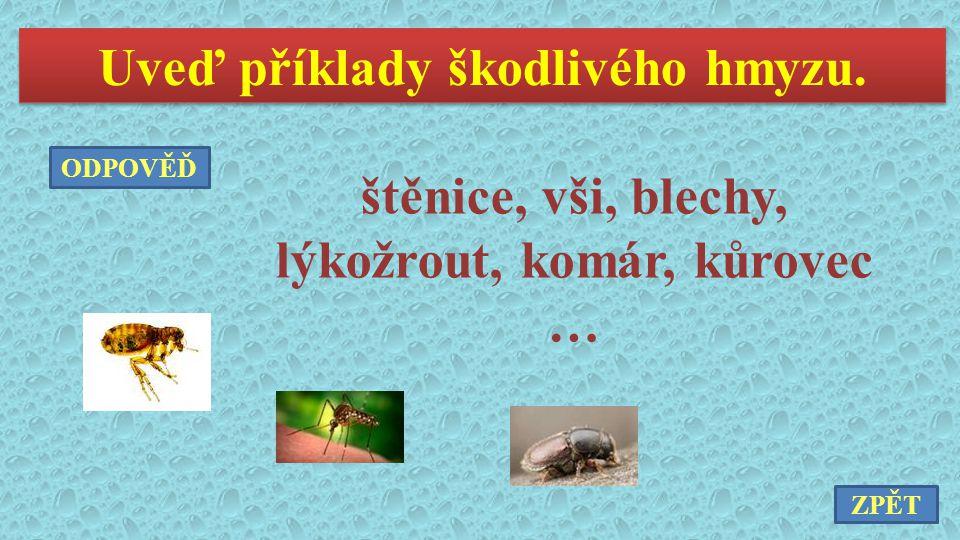 Uveď příklady škodlivého hmyzu.