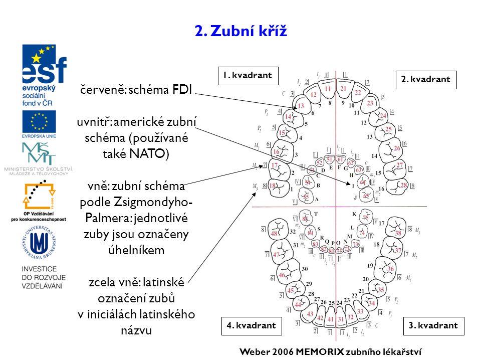 2. Zubní kříž červeně: schéma FDI