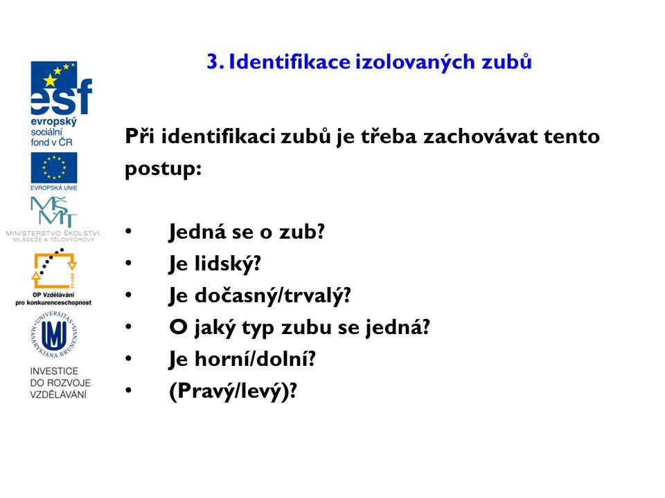3. Identifikace izolovaných zubů
