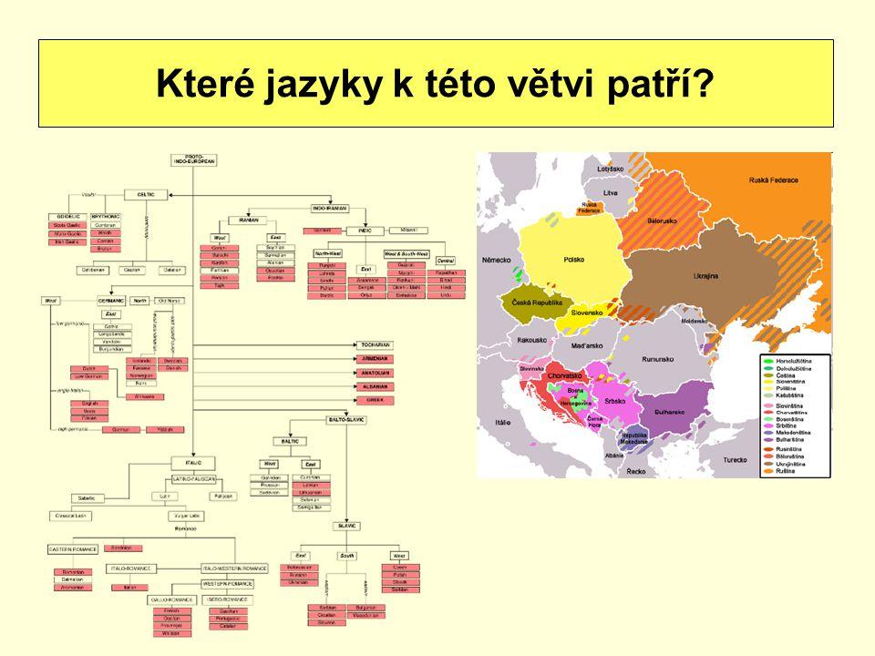 Které jazyky k této větvi patří
