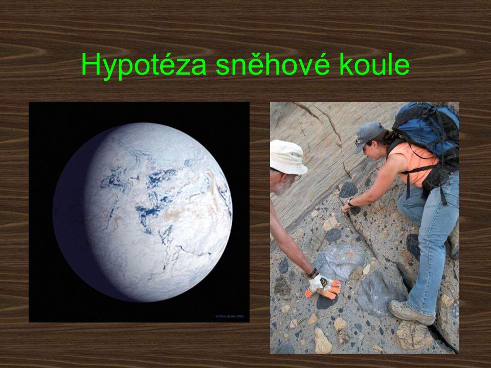 Hypotéza sněhové koule