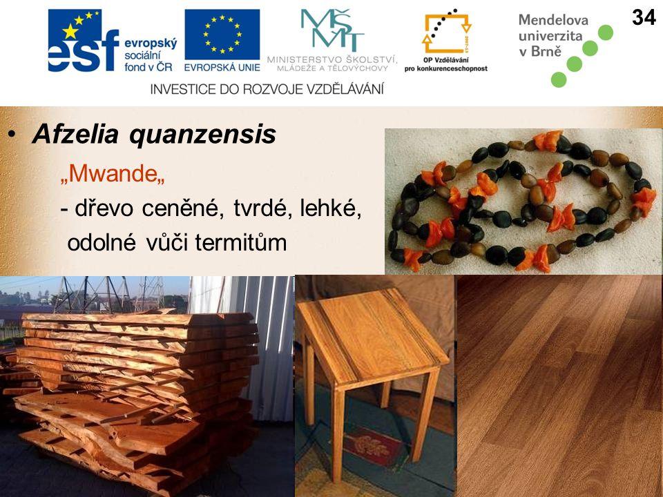 "Afzelia quanzensis ""Mwande"" - dřevo ceněné, tvrdé, lehké,"
