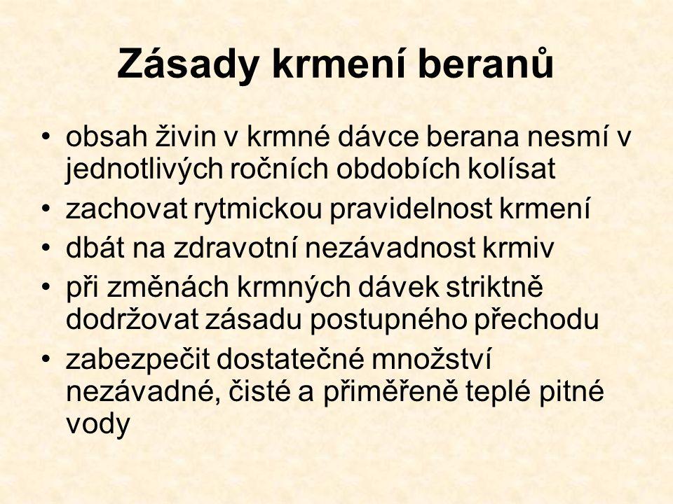 Zásady krmení beranů obsah živin v krmné dávce berana nesmí v jednotlivých ročních obdobích kolísat.