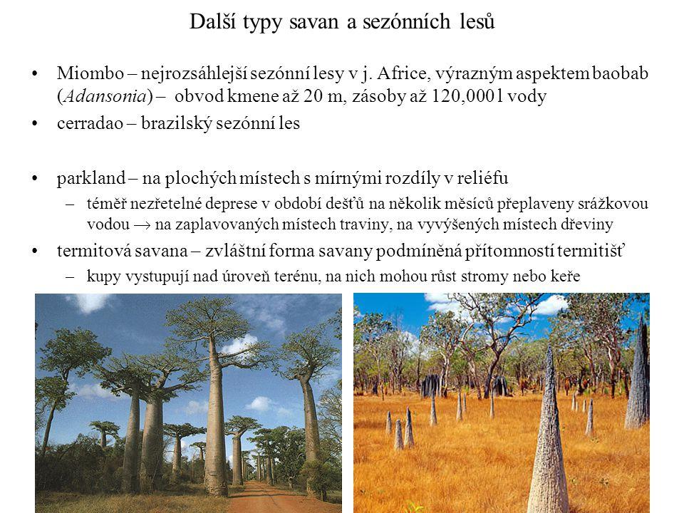 Další typy savan a sezónních lesů