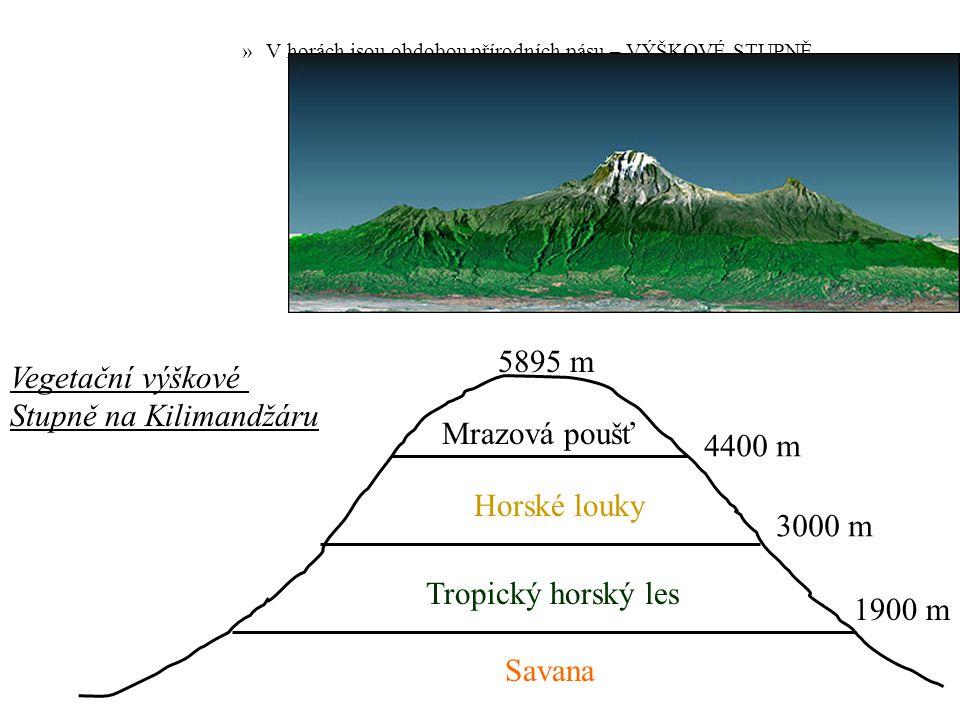 Stupně na Kilimandžáru Mrazová poušť 4400 m