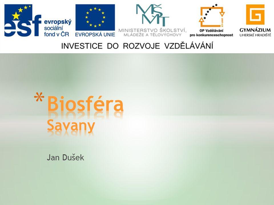 Biosféra Savany Jan Dušek