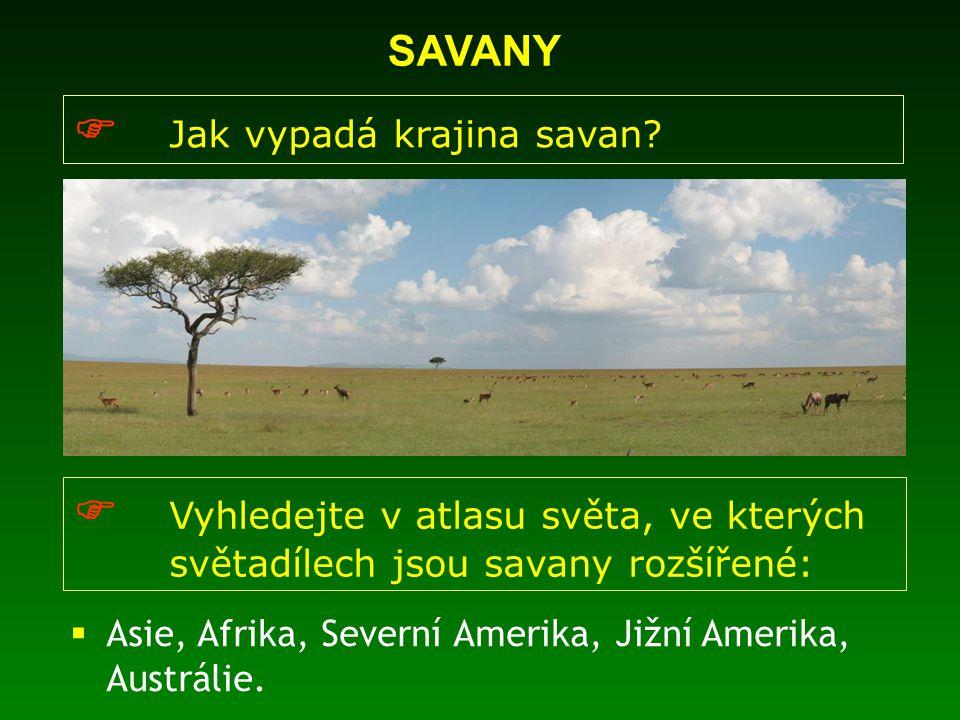  Jak vypadá krajina savan