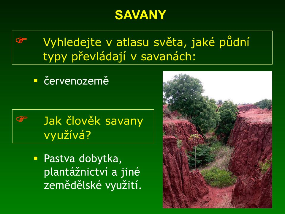  Vyhledejte v atlasu světa, jaké půdní typy převládají v savanách: