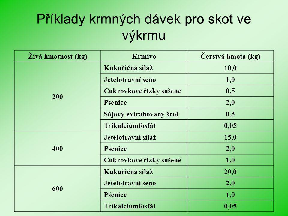Příklady krmných dávek pro skot ve výkrmu