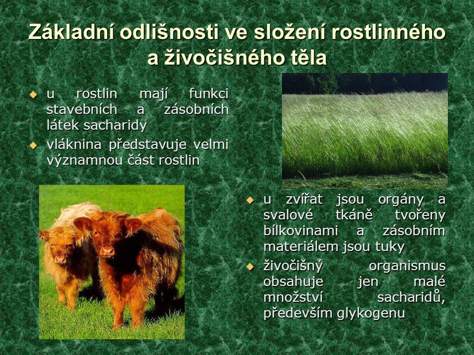 Základní odlišnosti ve složení rostlinného a živočišného těla