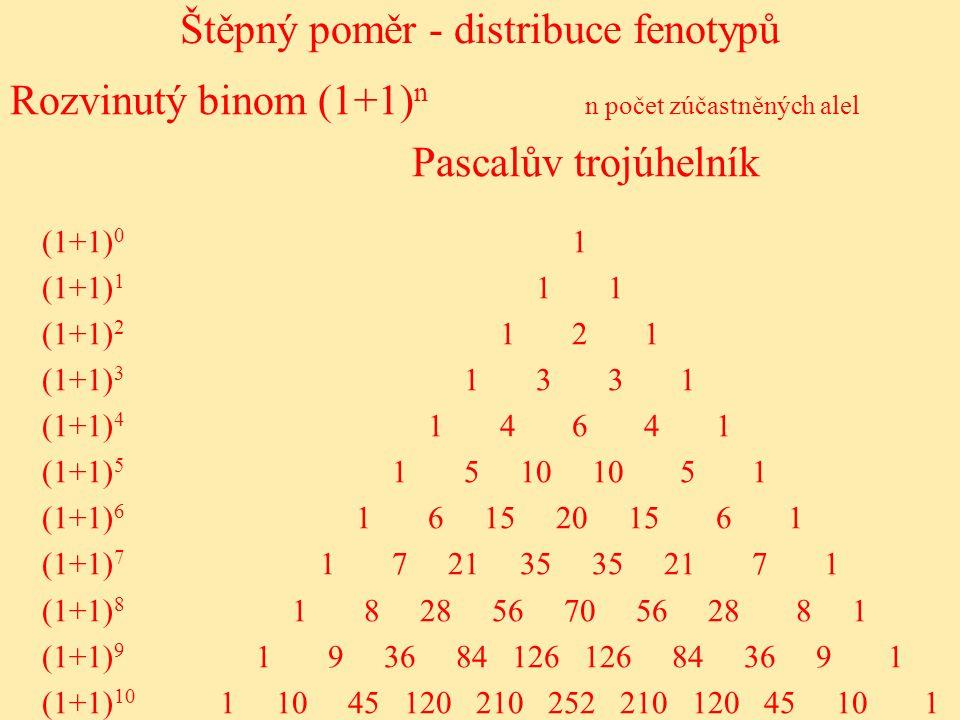 Štěpný poměr - distribuce fenotypů