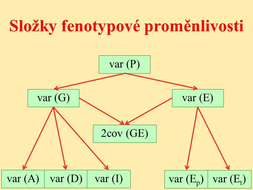 Složky fenotypové proměnlivosti
