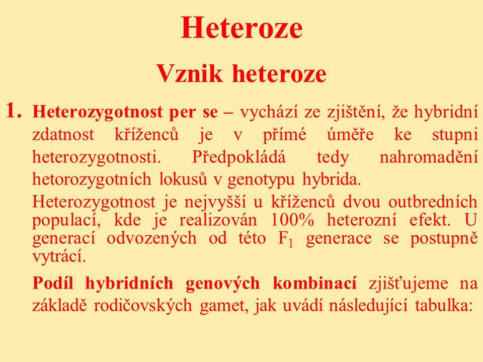 Heteroze Vznik heteroze