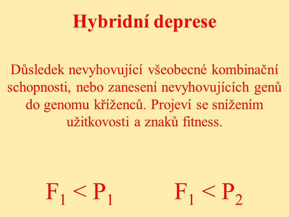 F1 < P1 F1 < P2 Hybridní deprese