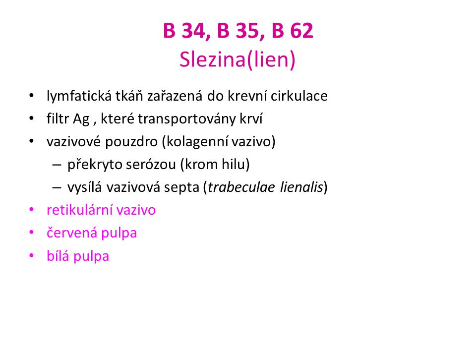 B 34, B 35, B 62 Slezina(lien) lymfatická tkáň zařazená do krevní cirkulace. filtr Ag , které transportovány krví.