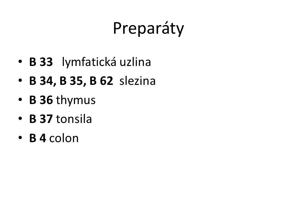 Preparáty B 33 lymfatická uzlina B 34, B 35, B 62 slezina B 36 thymus