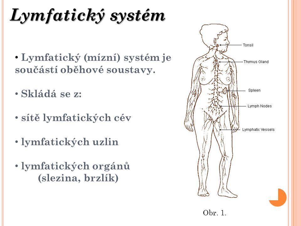 Lymfatický systém Lymfatický (mízní) systém je součástí oběhové soustavy. Skládá se z: sítě lymfatických cév.