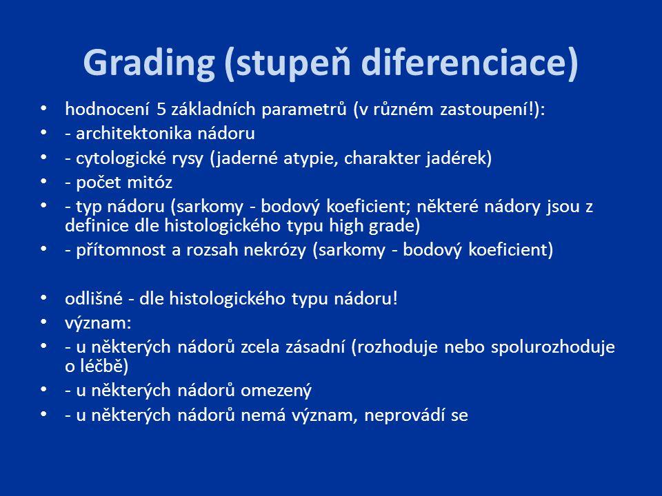 Grading (stupeň diferenciace)