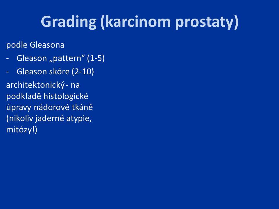 Grading (karcinom prostaty)