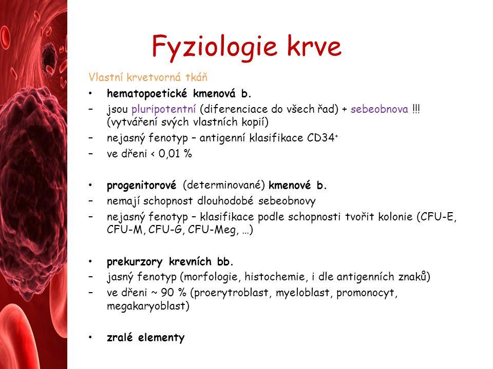 Fyziologie krve Vlastní krvetvorná tkáň hematopoetické kmenová b.
