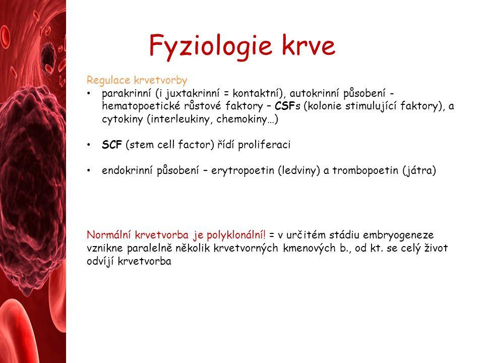 Fyziologie krve Regulace krvetvorby