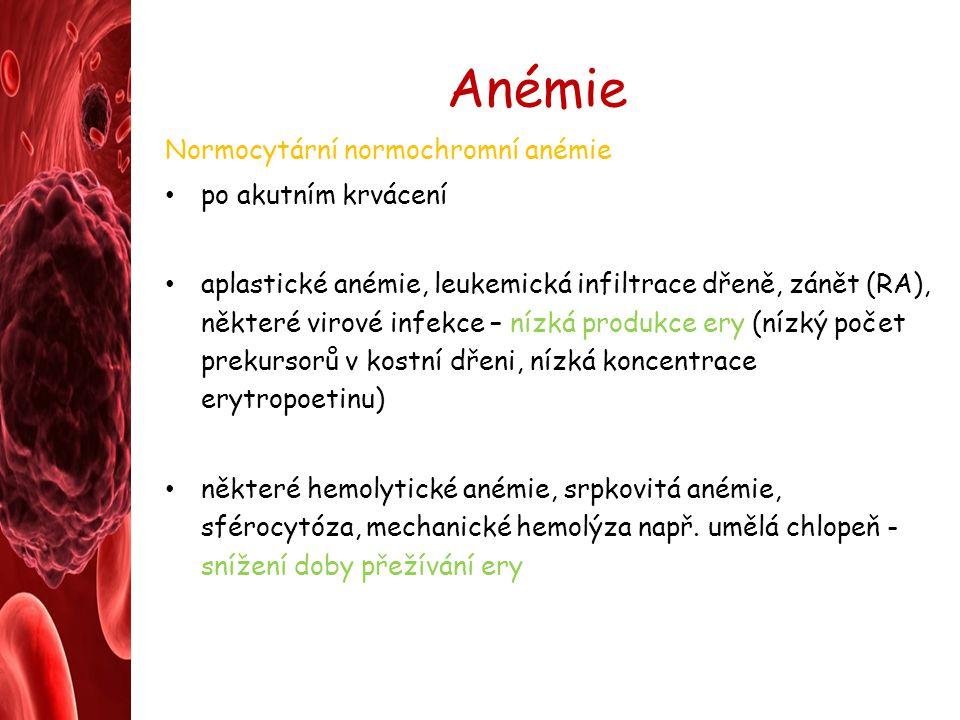 Anémie Normocytární normochromní anémie po akutním krvácení
