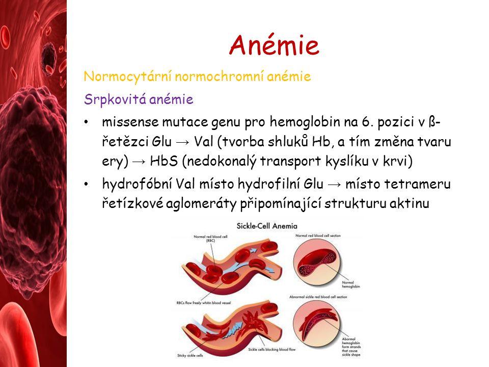 Anémie Normocytární normochromní anémie Srpkovitá anémie