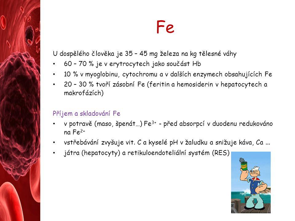 Fe U dospělého člověka je 35 – 45 mg železa na kg tělesné váhy