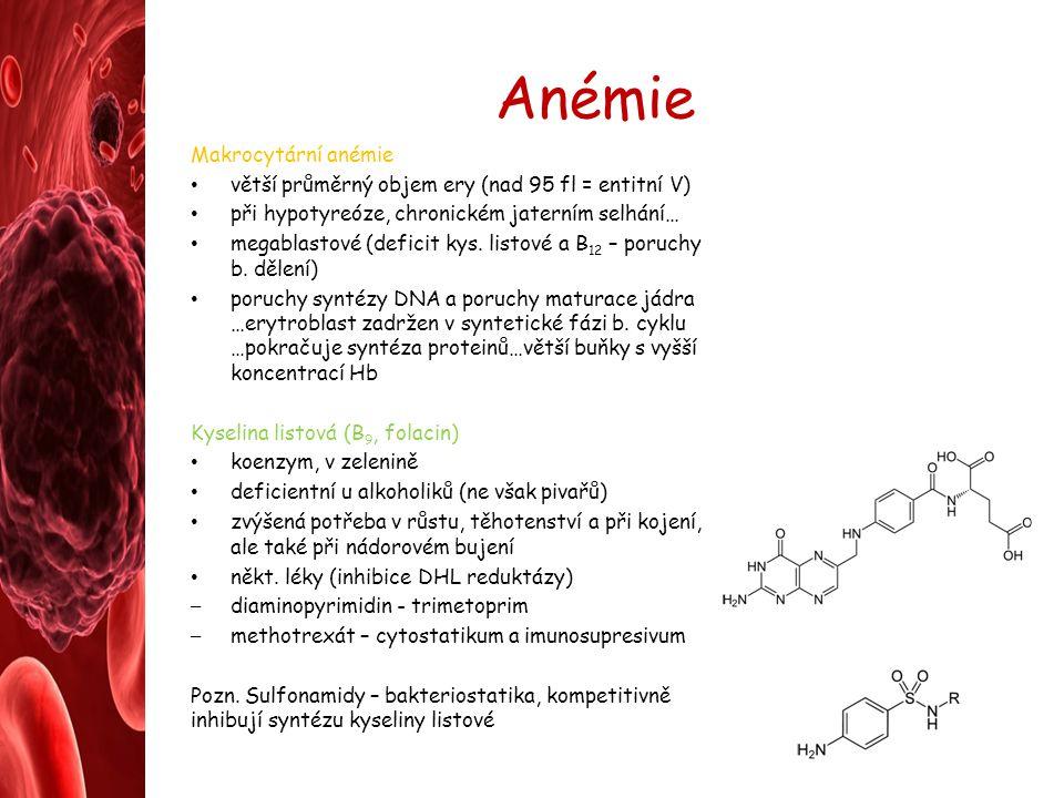 Anémie Makrocytární anémie