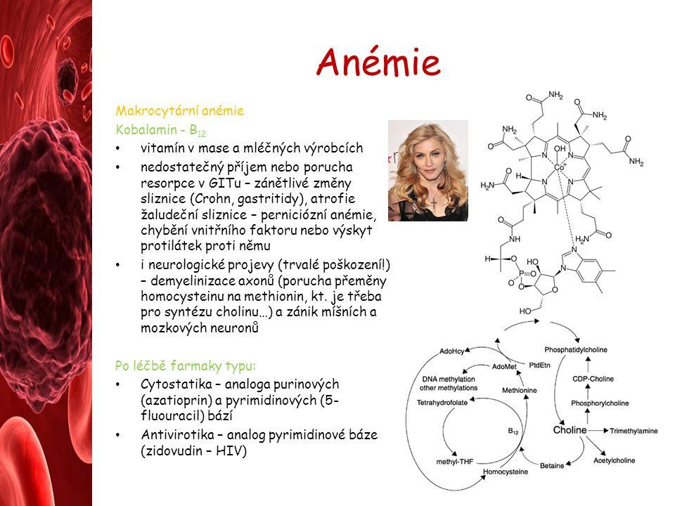 Anémie Makrocytární anémie Kobalamin - B12