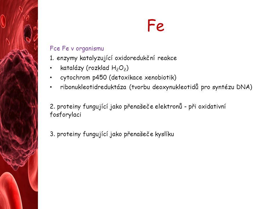 Fe Fce Fe v organismu enzymy katalyzující oxidoredukční reakce