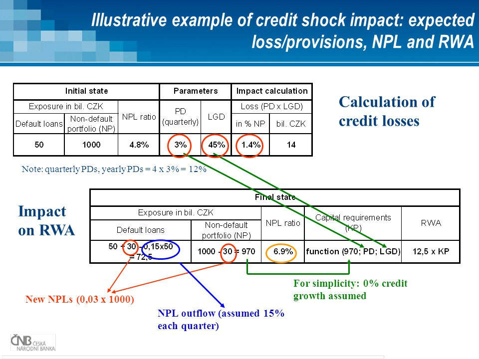 Illustrative example of credit shock impact: expected loss/provisions, NPL and RWA