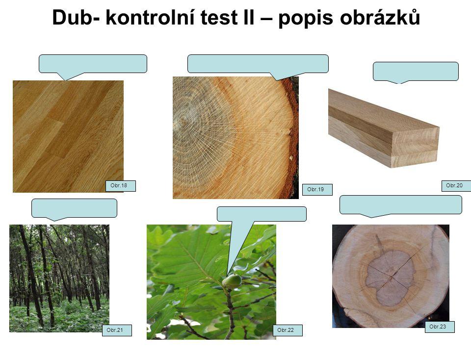 Dub- kontrolní test II – popis obrázků