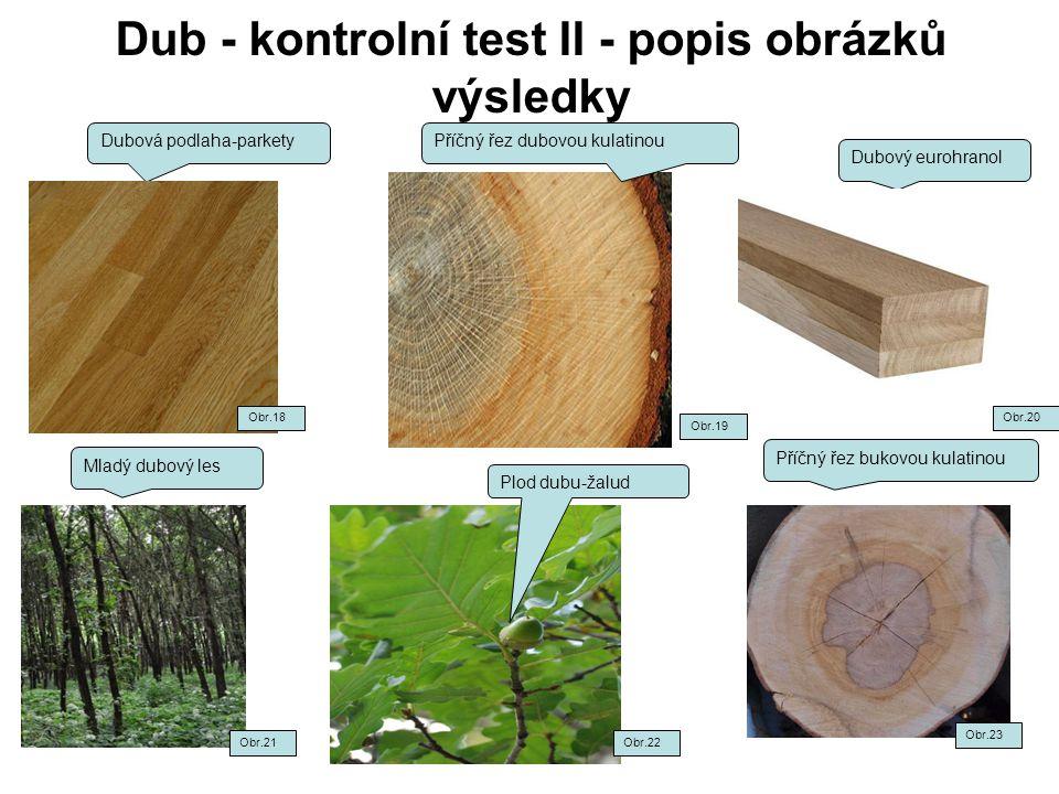 Dub - kontrolní test II - popis obrázků výsledky