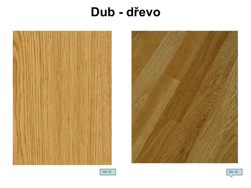 Dub - dřevo Obr.15 Obr.16