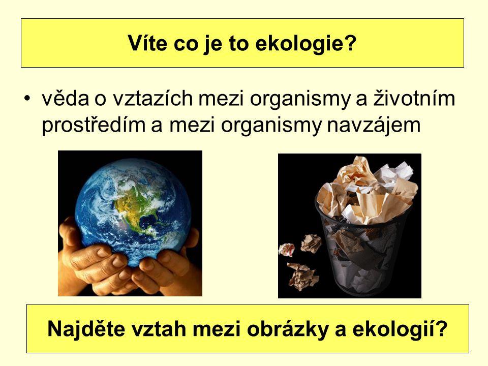 Najděte vztah mezi obrázky a ekologií