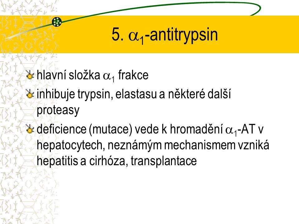 5. 1-antitrypsin hlavní složka 1 frakce