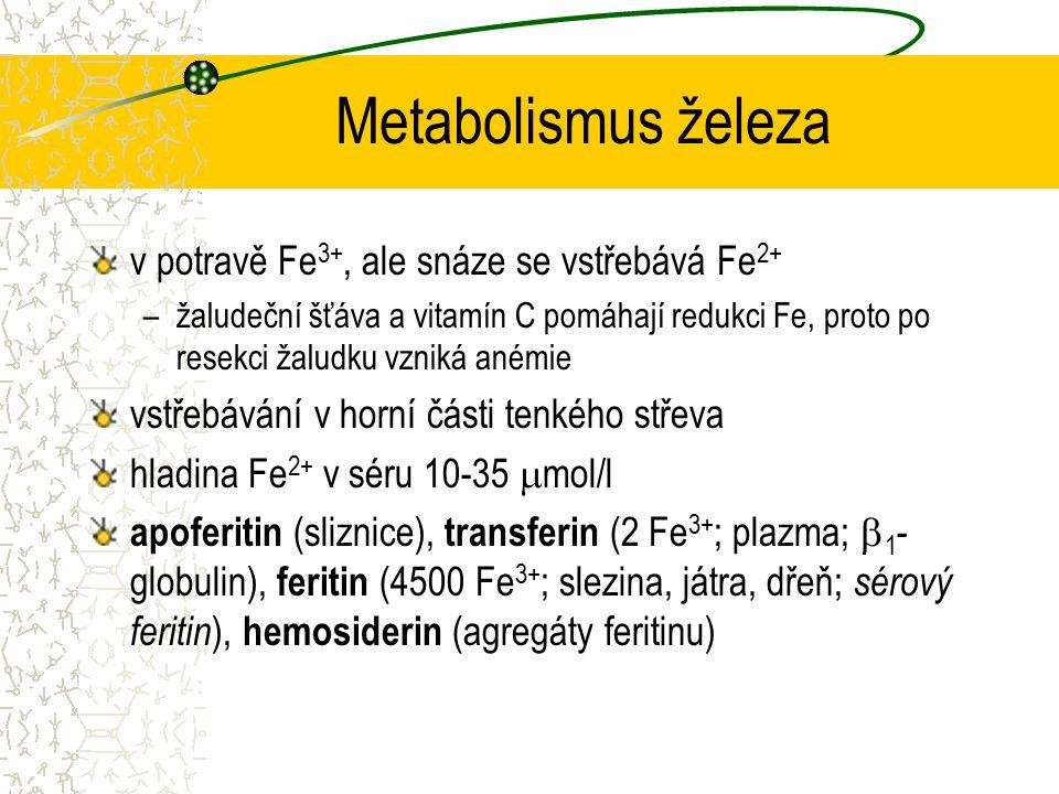 Metabolismus železa v potravě Fe3+, ale snáze se vstřebává Fe2+