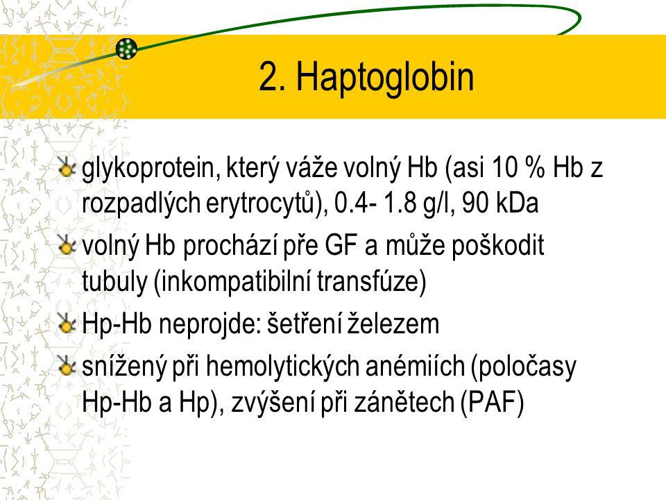 2. Haptoglobin glykoprotein, který váže volný Hb (asi 10 % Hb z rozpadlých erytrocytů), 0.4- 1.8 g/l, 90 kDa.