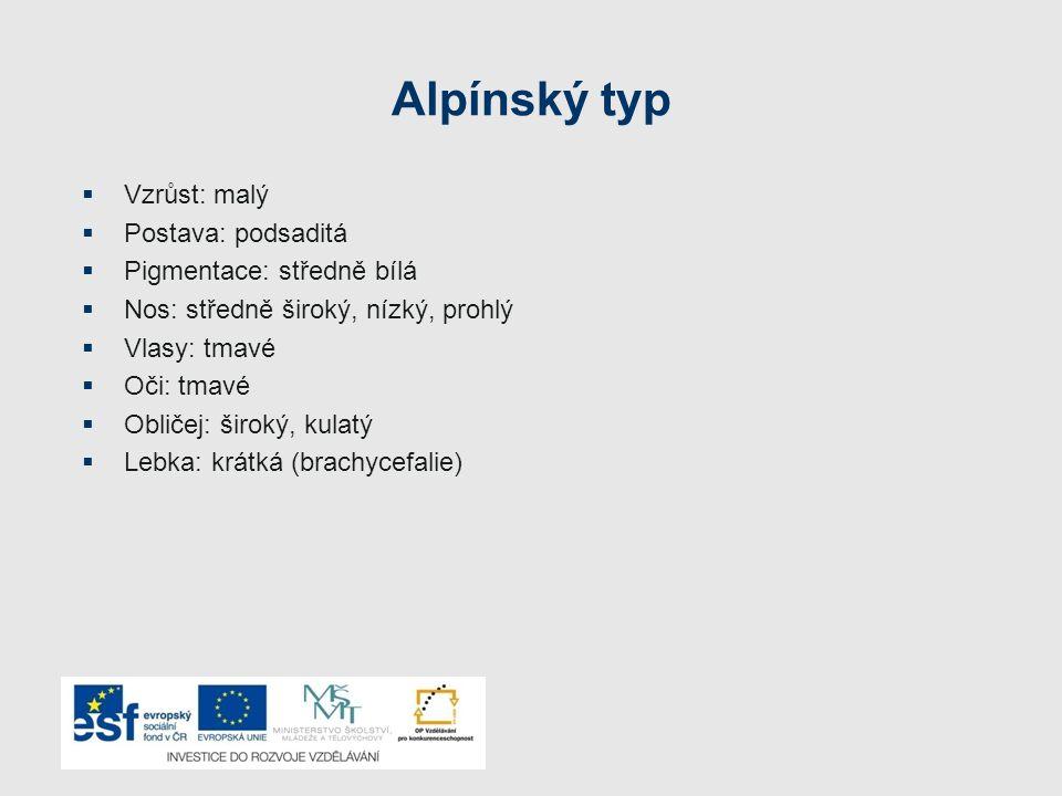 Alpínský typ Vzrůst: malý Postava: podsaditá Pigmentace: středně bílá