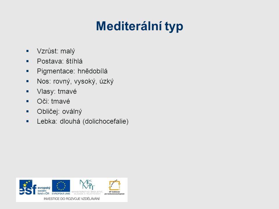Mediterální typ Vzrůst: malý Postava: štíhlá Pigmentace: hnědobílá