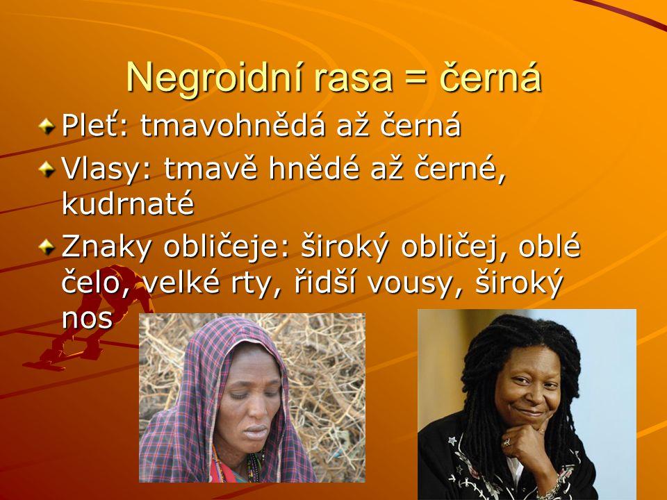 Negroidní rasa = černá Pleť: tmavohnědá až černá